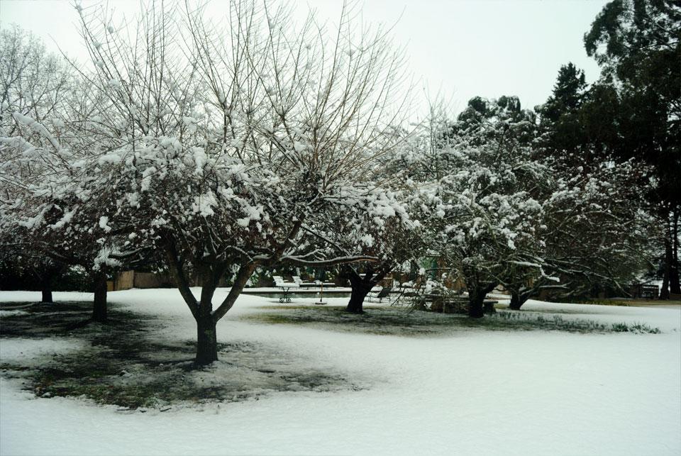 kwazulu-natal-snow-11.jpg