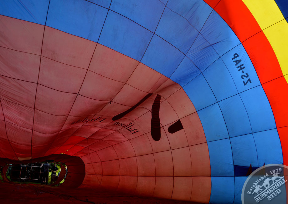 hot air ballooning kzn midlands 8