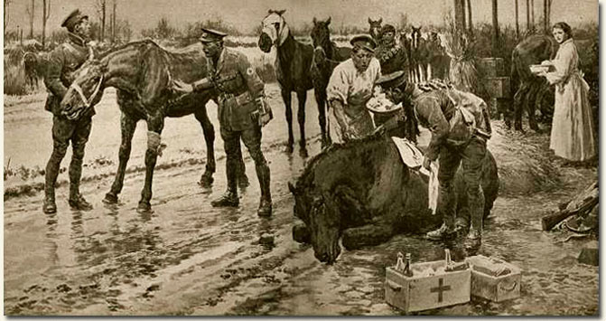 british war horses