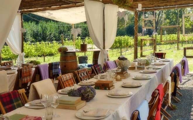 abington-wine-estate-5.jpg
