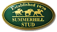 summerhill-stud.png