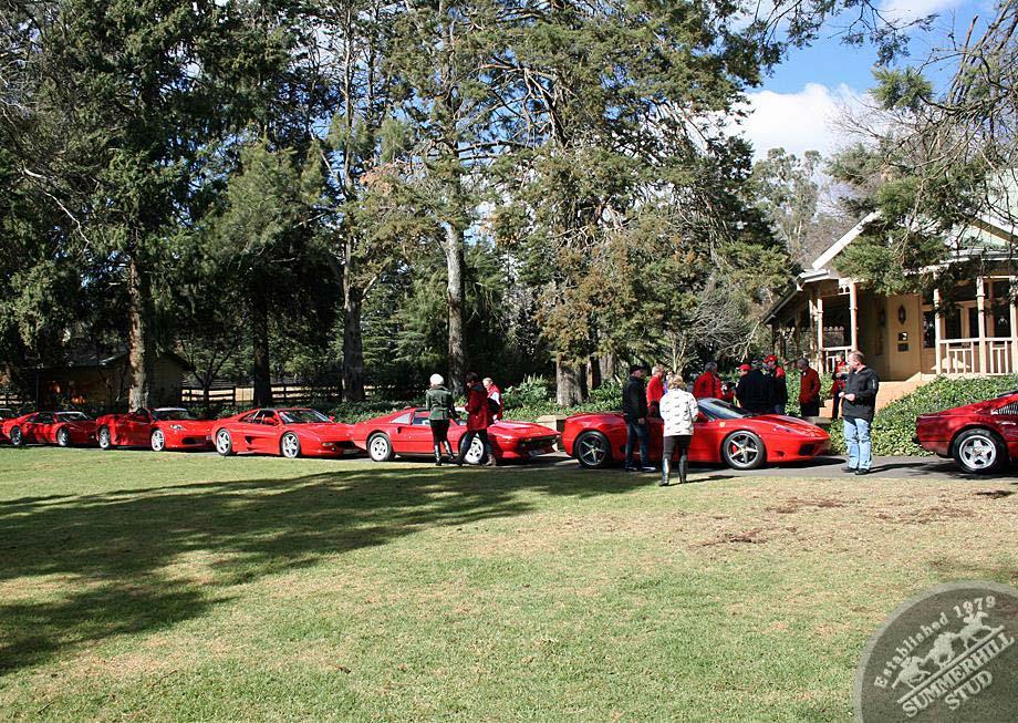 Ferrari Club 3