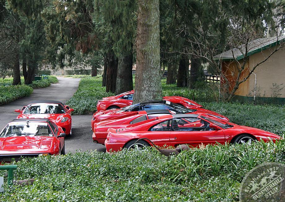 Ferrari Club 8