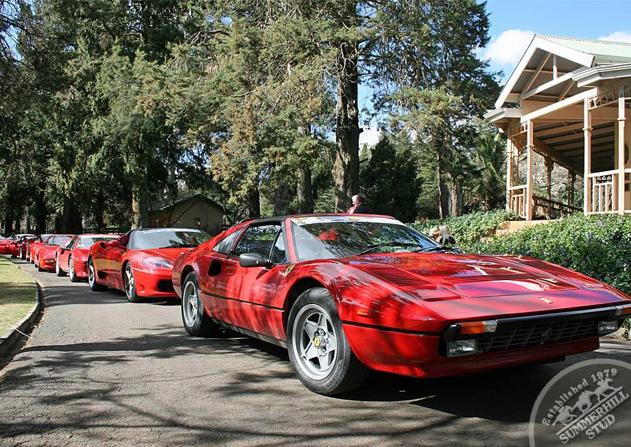 Ferrari Club 9