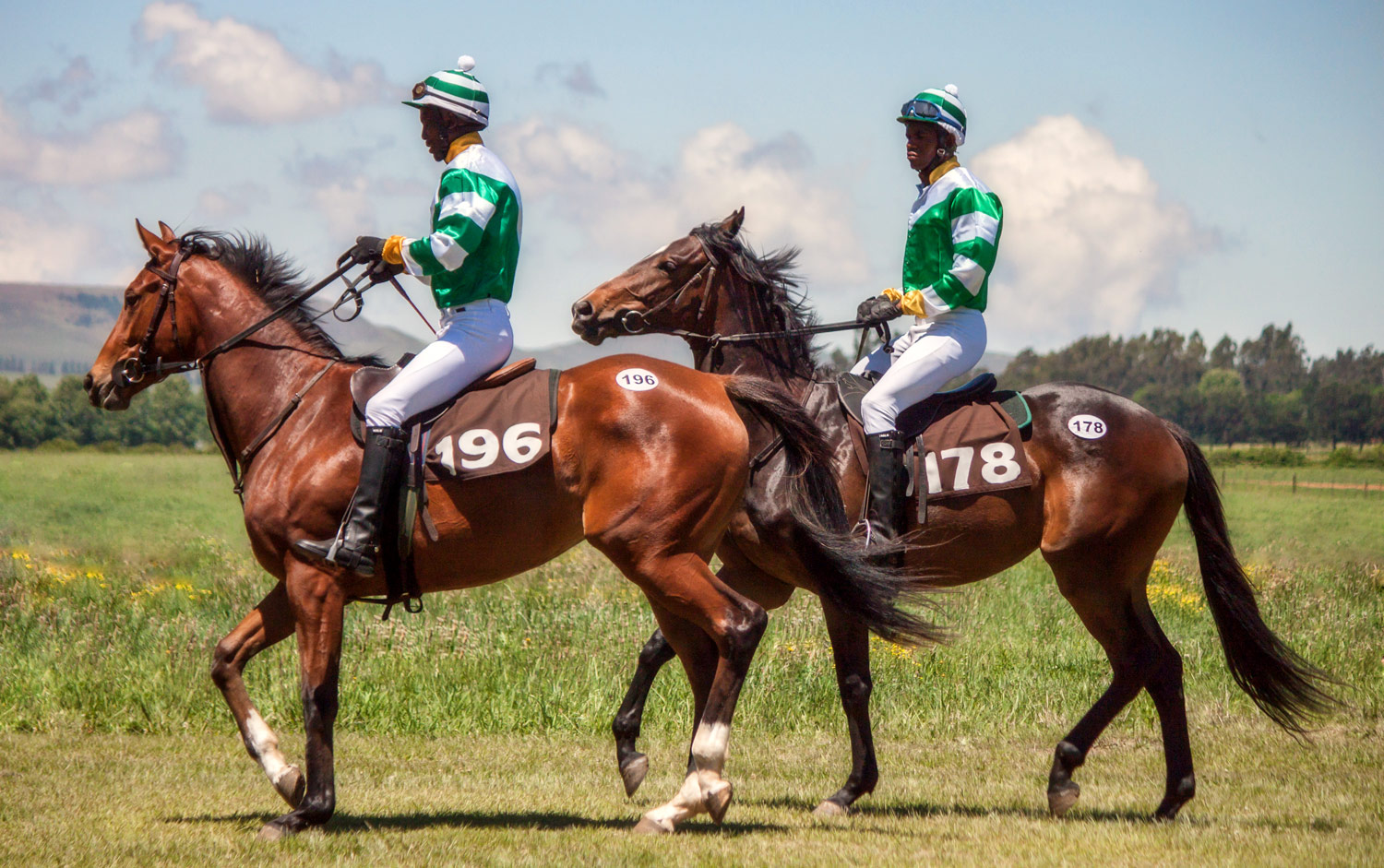 """""""Polishing"""" Summerhill's youngsters for the Ready To Run Gallops / Gareth du Plessis (p)"""