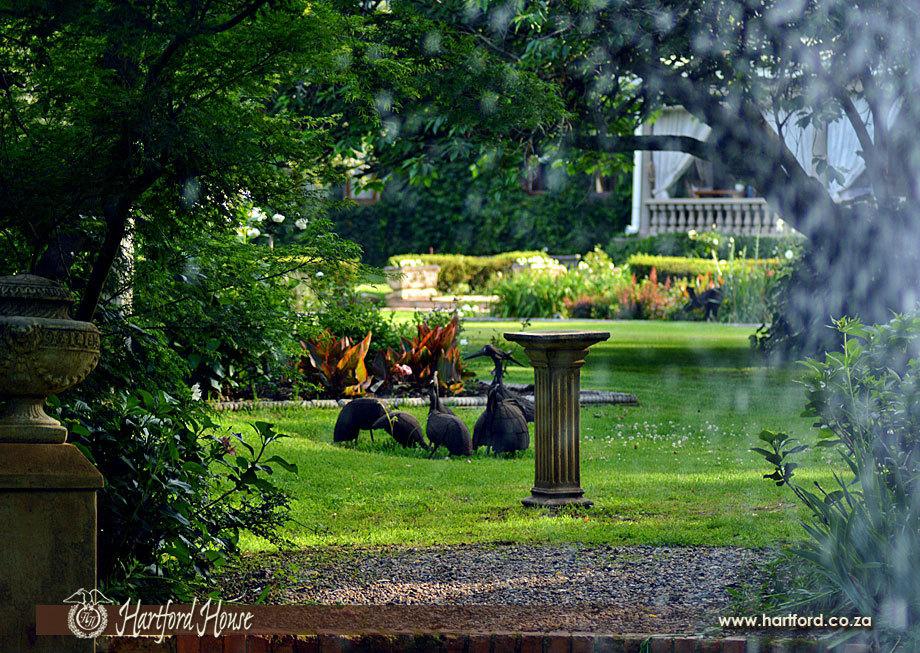 KZN Midlands Spring Gardens 2