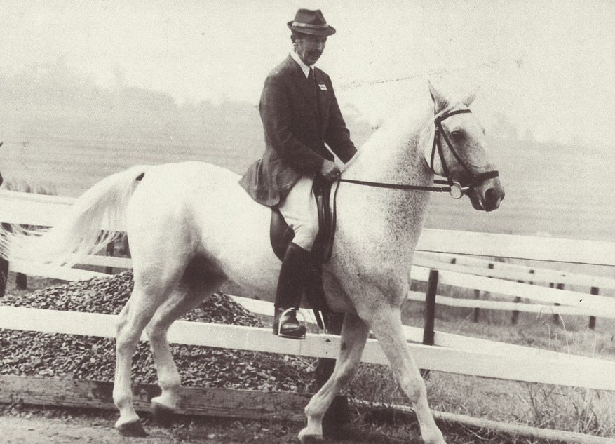 Major George Iwanowski riding one of his Lipizzaners to the Royal Show / Royal Agricultural Society (p)