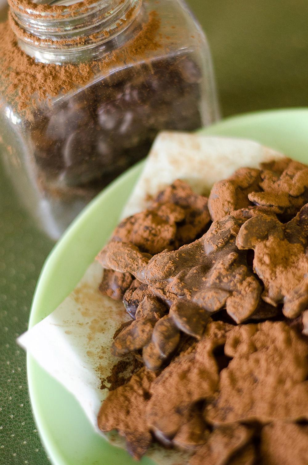 Chocolate Coated Pumpkin Seeds / Karen E. Photography (p)