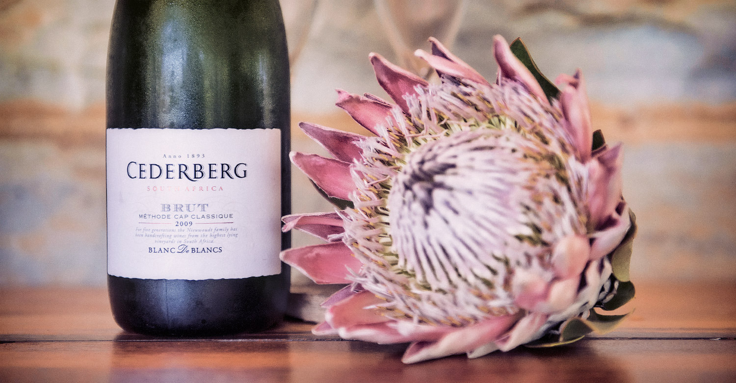 This week our favourite wine is Cederberg Blanc de Blancs from the creative hands of David Nieuwoudt, Cederberg Wine Estate Artist / Adrian Shields (p)