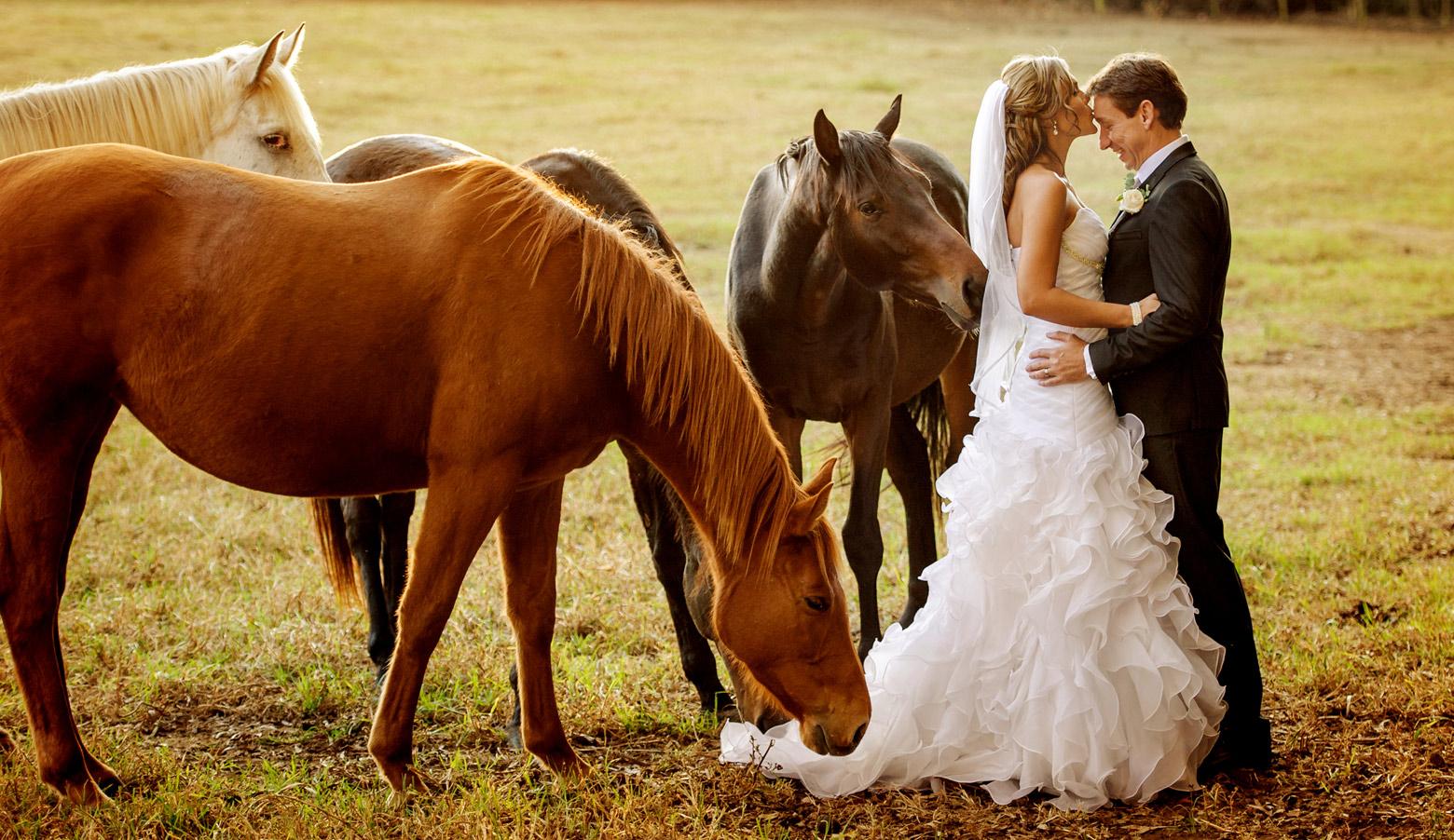 HH-wedding-10.jpg