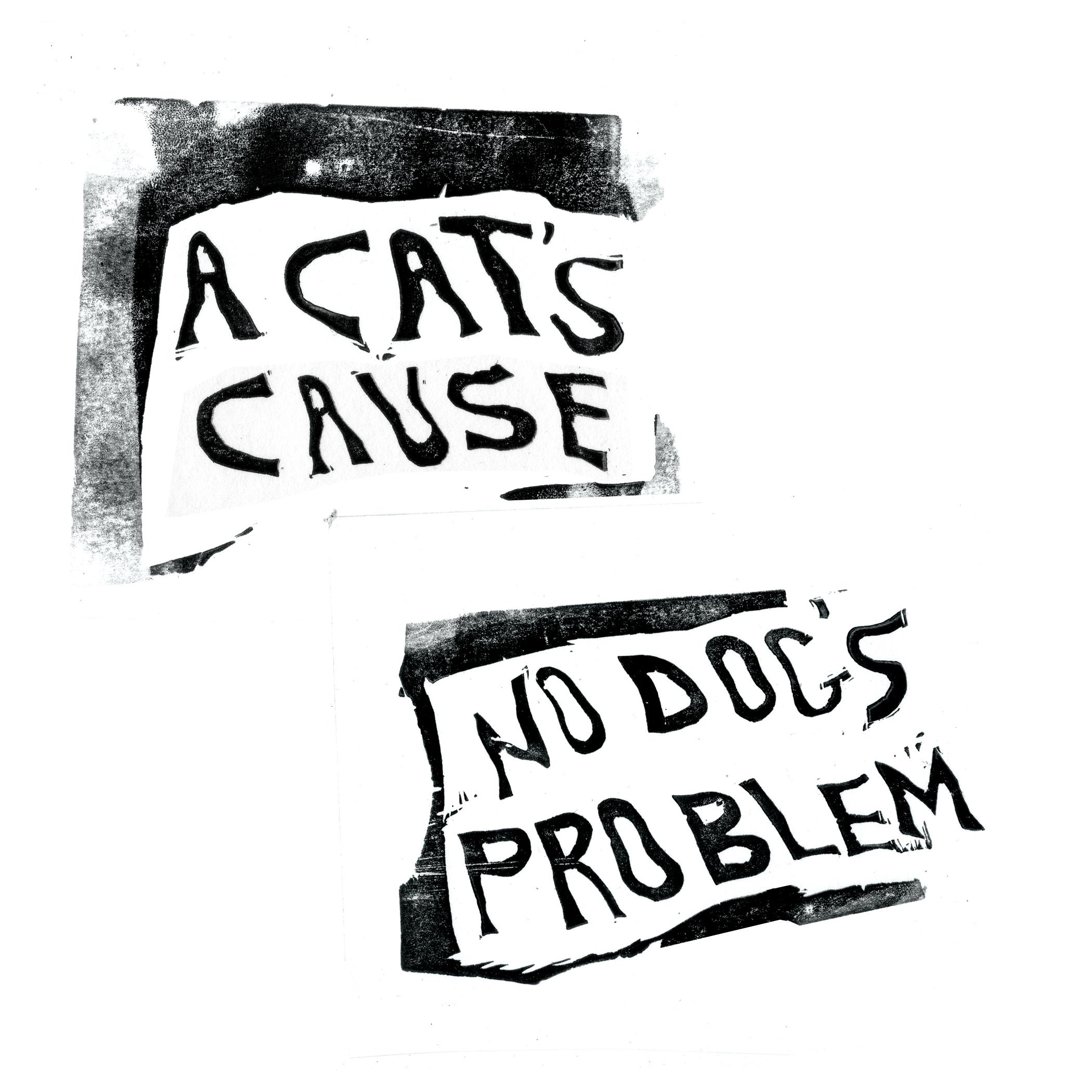 "Ivy- ""A Cat's Cause No Dog's Problem"""