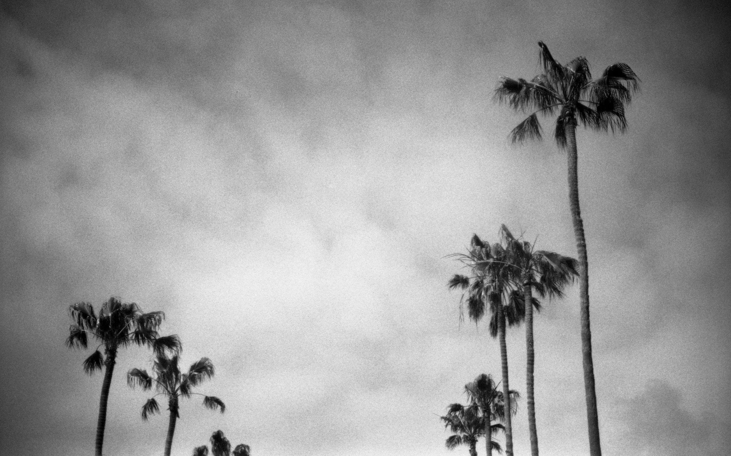 Outtake_California.jpg