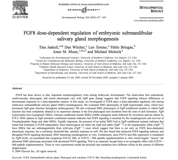 FGF8 dose-dependent regulation of embryonic submandibular salivary gland morphogenesis
