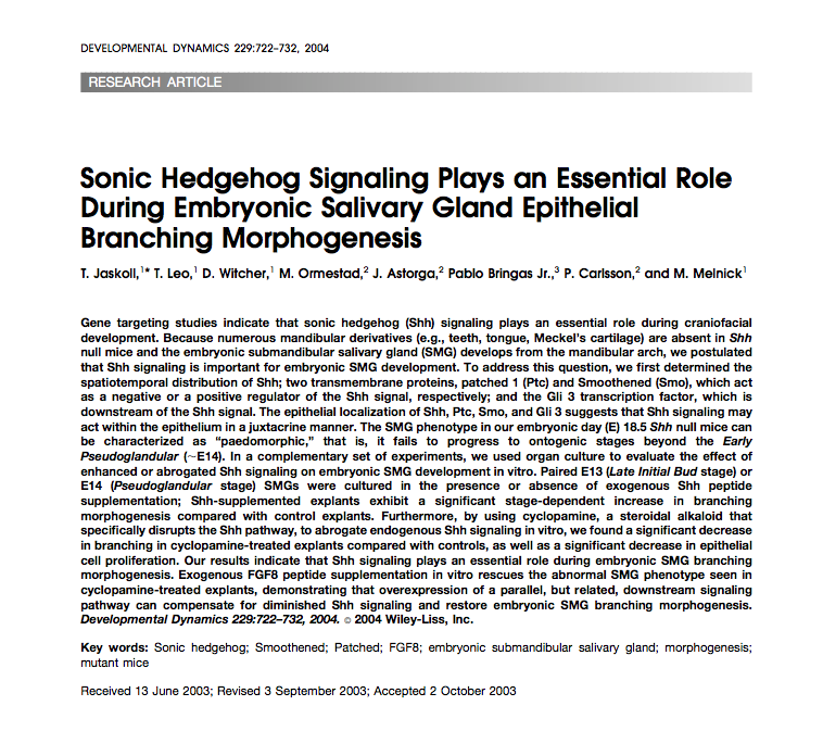 Sonic Hedgehog Signaling Plays an Essential Role During Embryonic Salivary Gland Epithelial Branching Morphogenesis