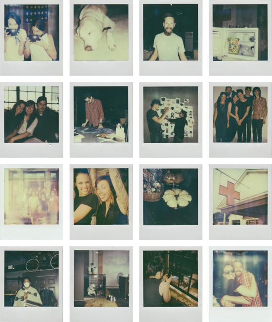 elise_polaroids.jpg