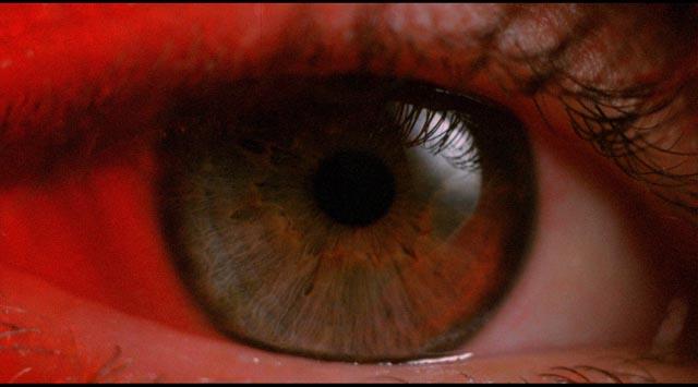 white_of_the_eye_02.jpg