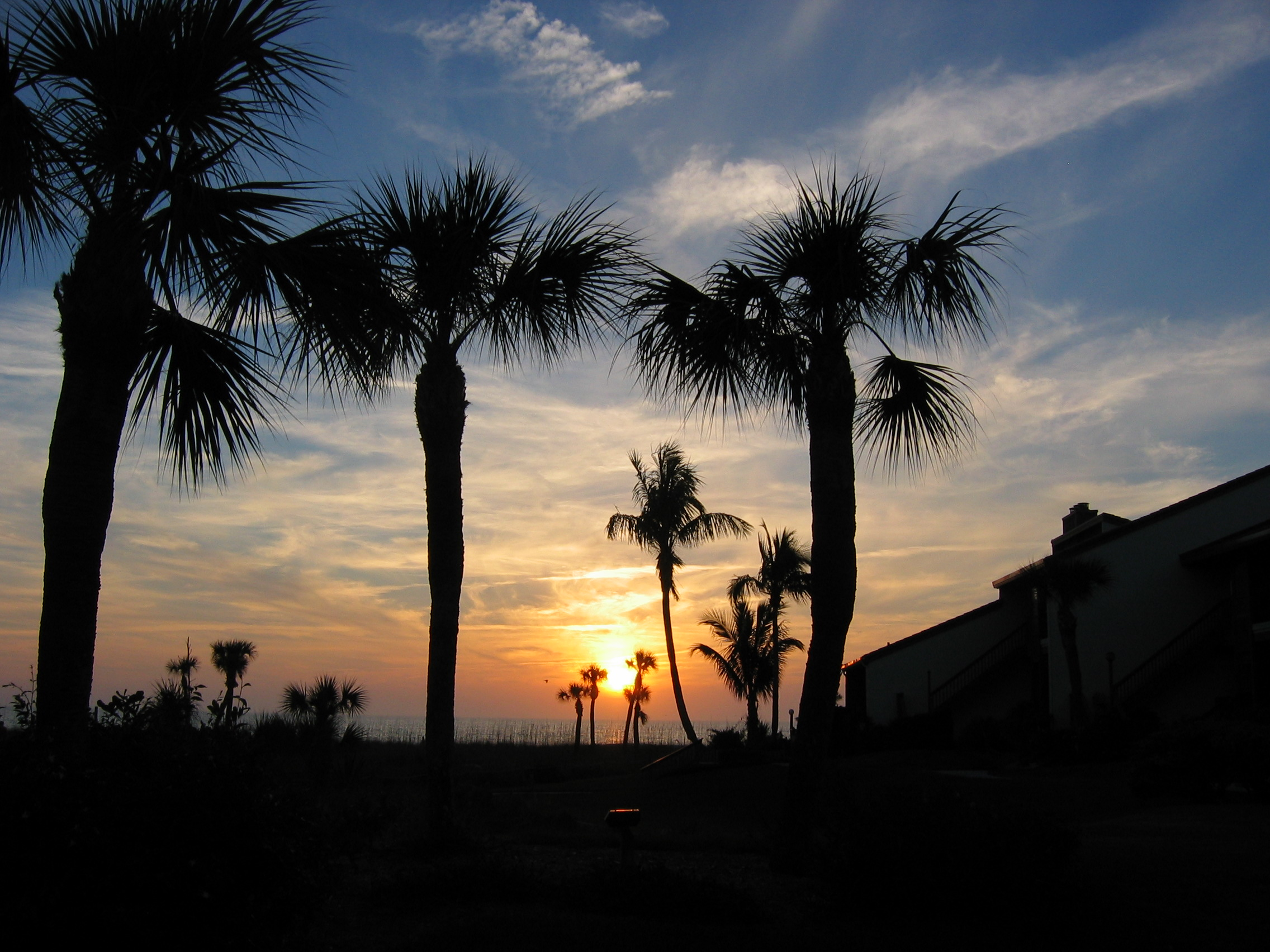 A beautiful Siesta Key sunset! Blair's getting to be a pretty good photographer, isn't he?