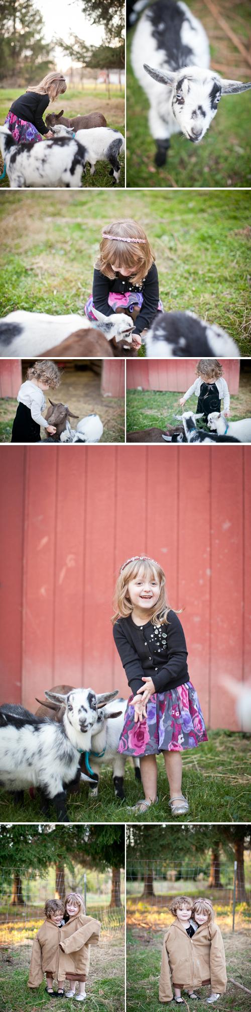 Ohio Family Portraits
