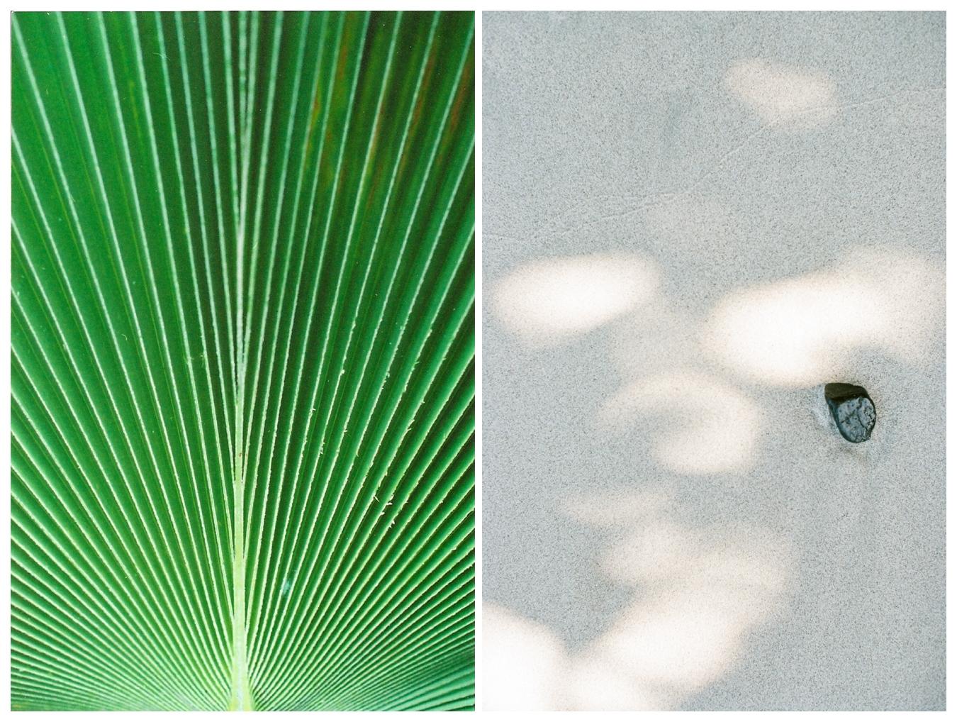 lily glass photography | st. john usvi