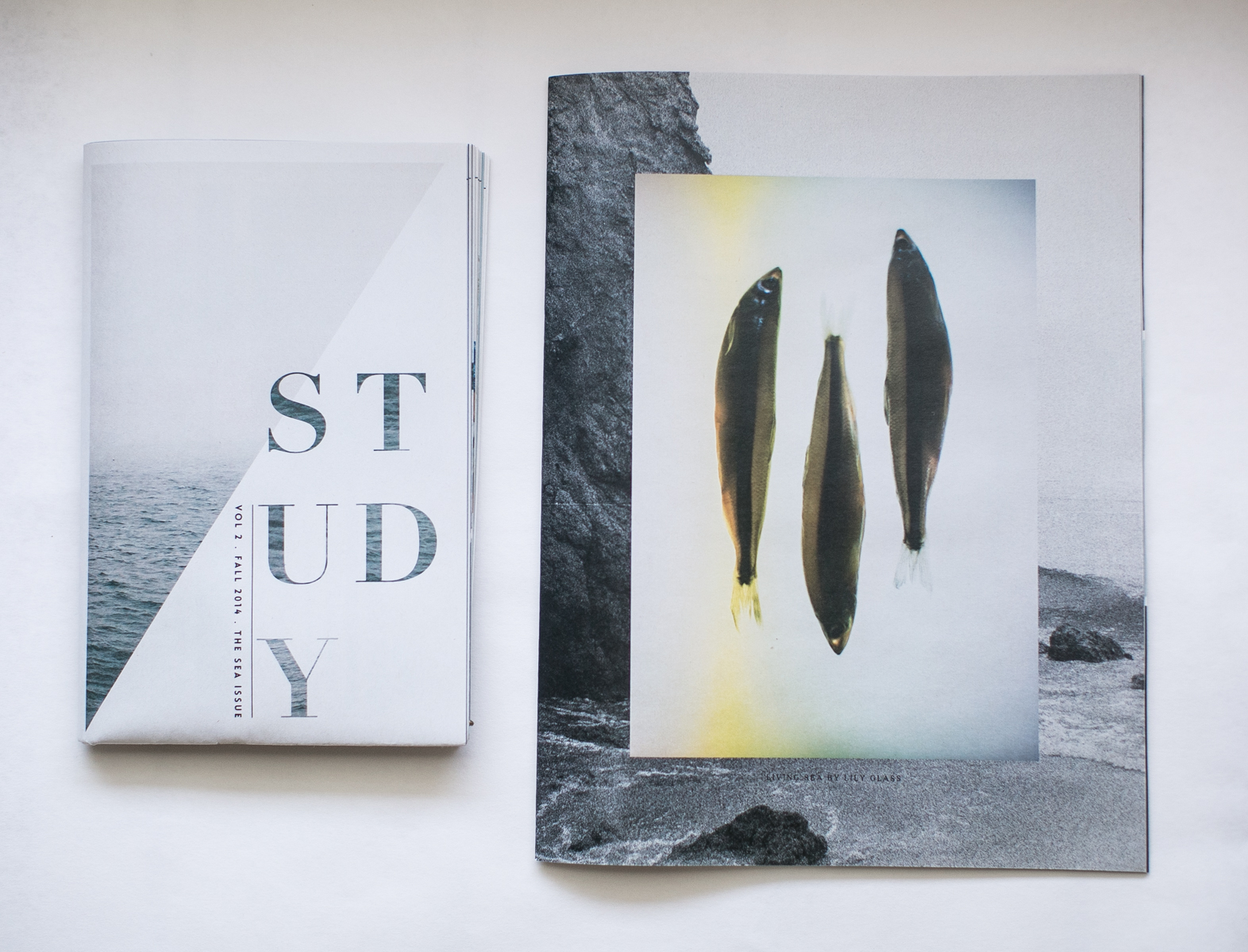 STUDY by Hart + Honey | The Sea Issue