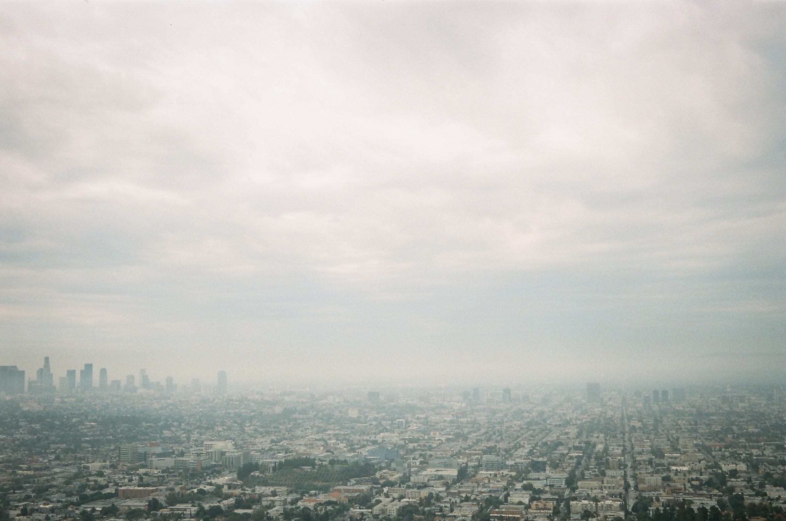 view of los ángeles from griffith park observatory | lily glass