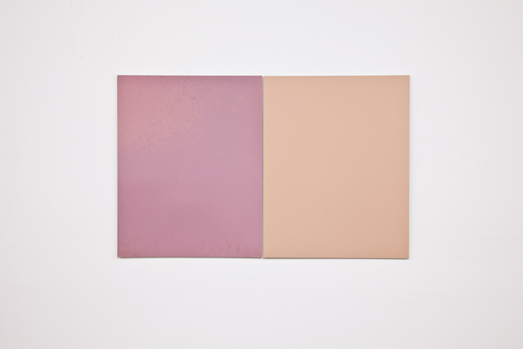 Alex Perweiler  Italian Chameleon  2012  2 found Unprocessed c-prints mounted to aluminum  20 x 32 inches
