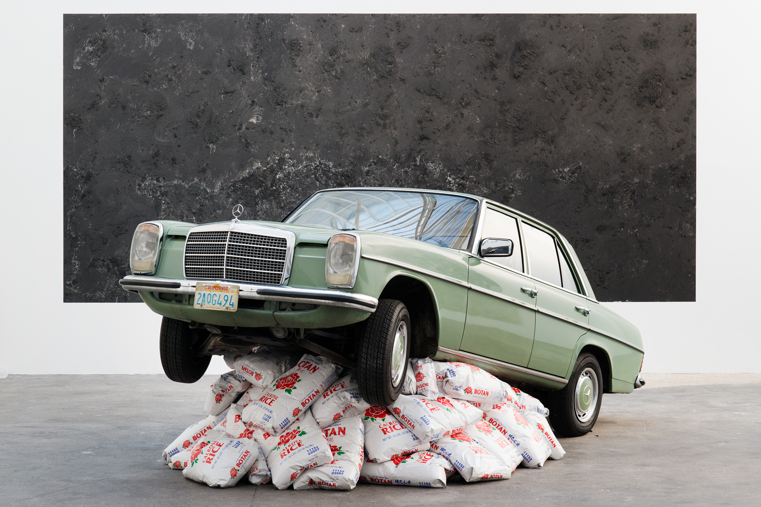 Nick Darmstaedter Rice Rocket 2013 Car on rice 197 x 165 x 71 inches