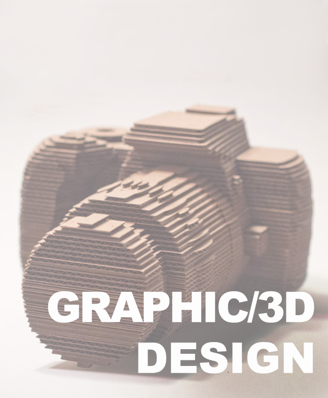 graphic des 2.jpg
