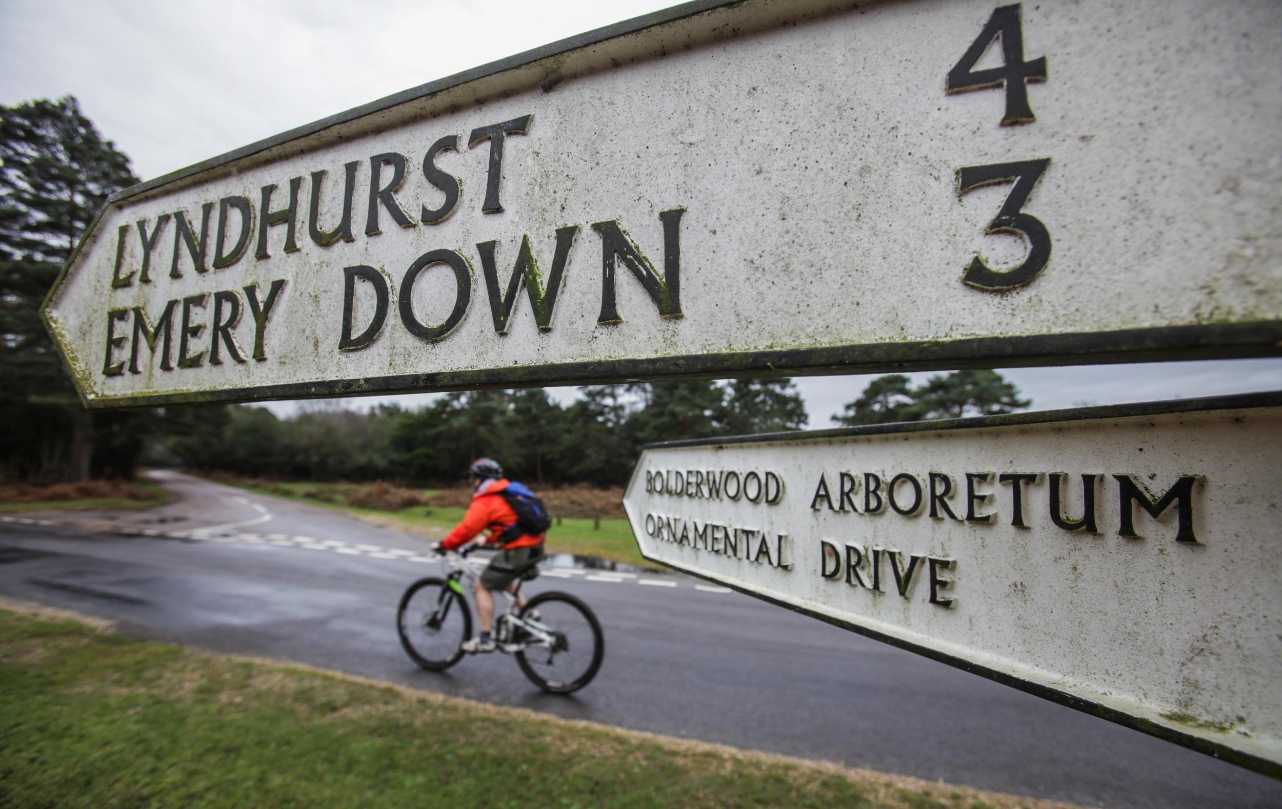 Great British MINI Adventure Day 14 - MTN Biking in the New Forest
