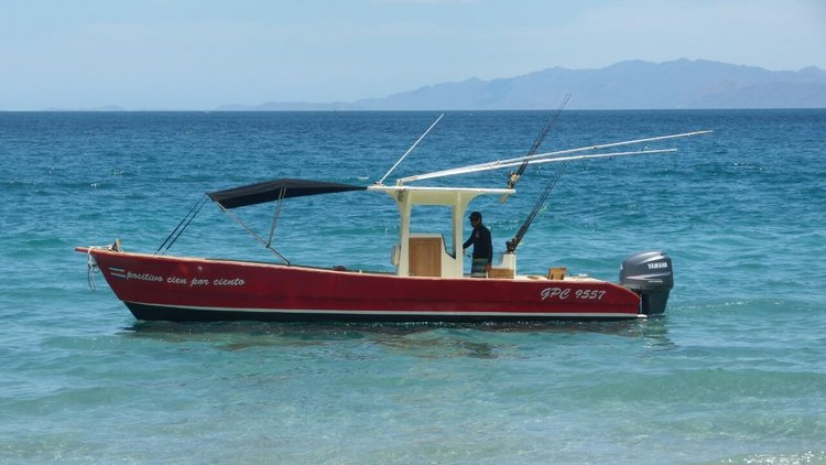 Positivo 100% - 29' Center Console Panga with Shade and Bathroom