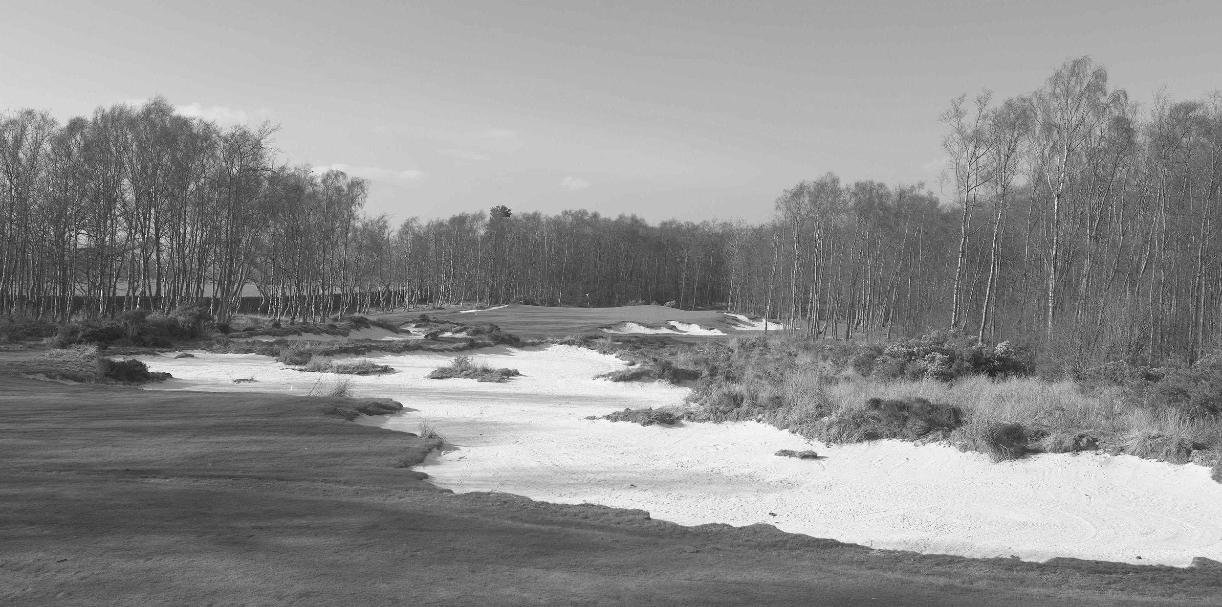 Golf Hole #3