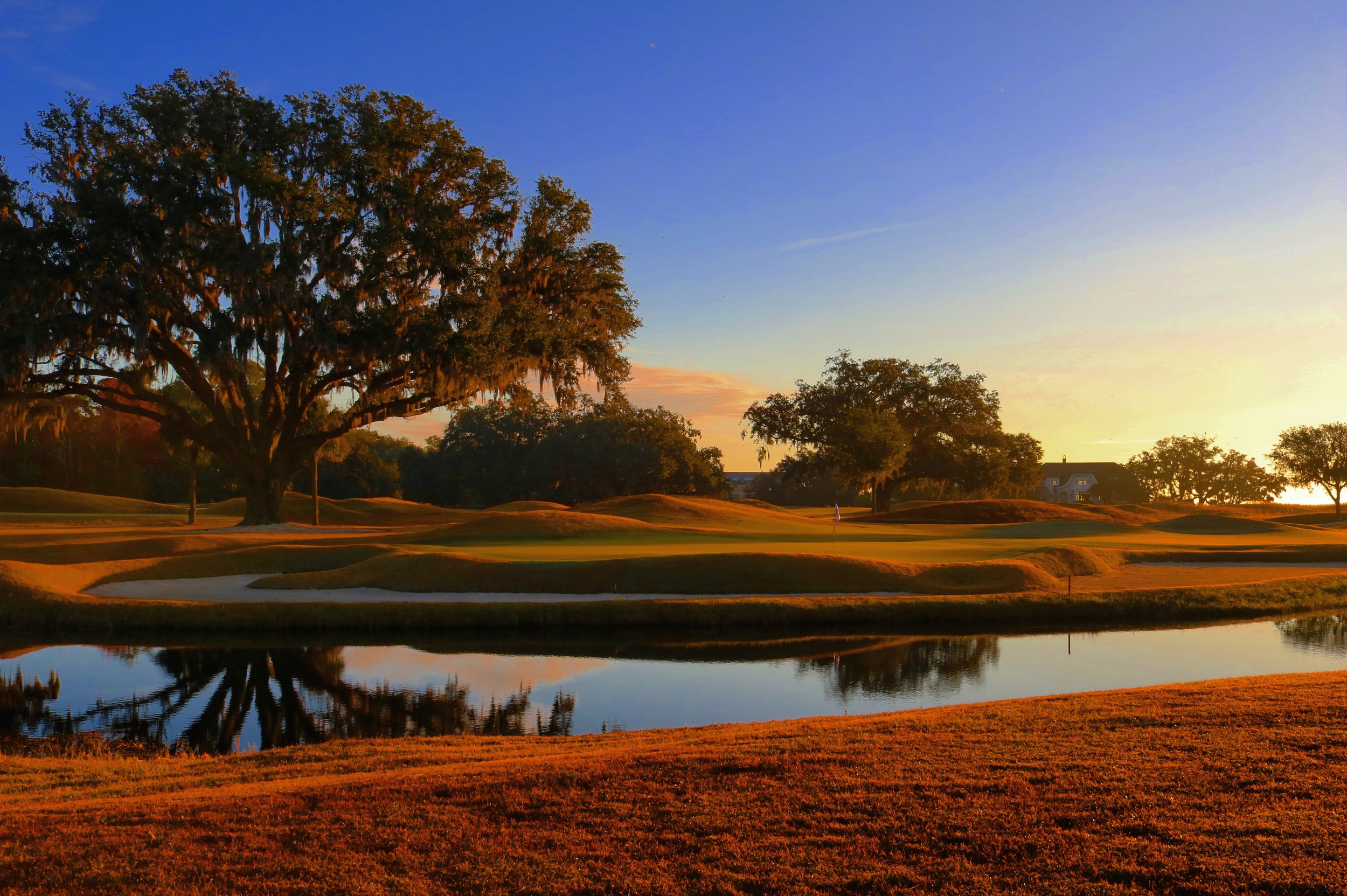 Golf Hole #10
