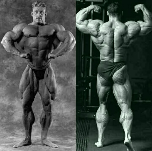 dorian-yates-back-front-legs-muscular-bodybuilder