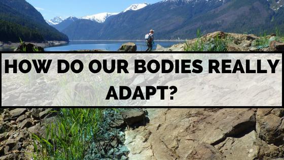 bodies-adapt-exercise-how