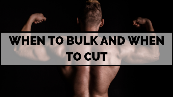 bulk-cut-bodybuilder-muscle-fat-lean