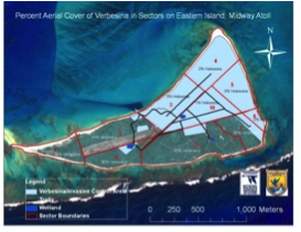 Figure 1. Management areas and percent aerial cover of verbesina on Eastern Island, Midway Atoll NWR.