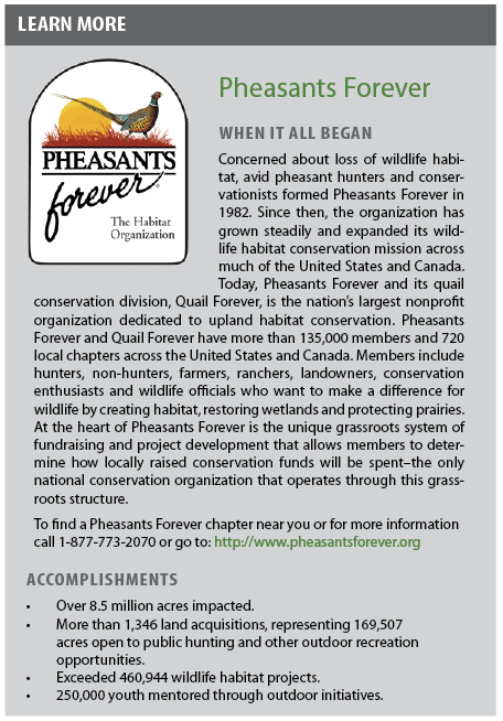 Pheasants Forever   When it all began   Concerned about loss of wildlife habitat, avid pheasant hunters and conservationists formed Pheasants Forever in 1982. Since then, the organization has grown steadily and expanded its wildlife habitat conservation mission across much of the United States and Canada. Today, Pheasants Forever and its quail conservation division, Quail Forever, is the nation's largest nonprofit organization dedicated to upland habitat conservation. Pheasants Forever and Quail Forever have more than 135,000 members and 720 local chapters across the United States and Canada. Members include hunters, non-hunters, farmers, ranchers, landowners, conservation enthusiasts and wildlife officials who want to make a difference for wildlife by creating habitat, restoring wetlands and protecting prairies. At the heart of Pheasants Forever is the unique grassroots system of fundraising and project development that allows members to determine how locally raised conservation funds will be spent–the only national conservation organization that operates through this grassroots structure.  To find a Pheasants Forever chapter near you or for more information call 1-877-773-2070 or go to: http://www.pheasantsforever.org   Accomplishments   Over 8.5 million acres impacted.  More than 1,346 land acquisitions, representing 169,507 acres open to public hunting and other outdoor recreation opportunities.  Exceeded 460,944 wildlife habitat projects.  250,000 youth mentored through outdoor initiatives.