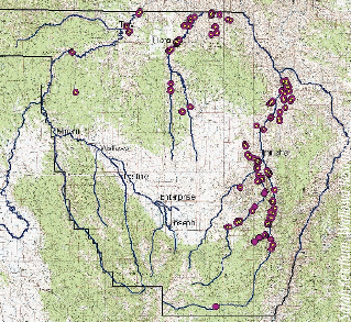 The map below shows the location of rush skeletonweed populations in the project area.