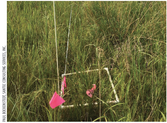 Plant community response  to herbicide treatments is measured before and after the herbicide application.