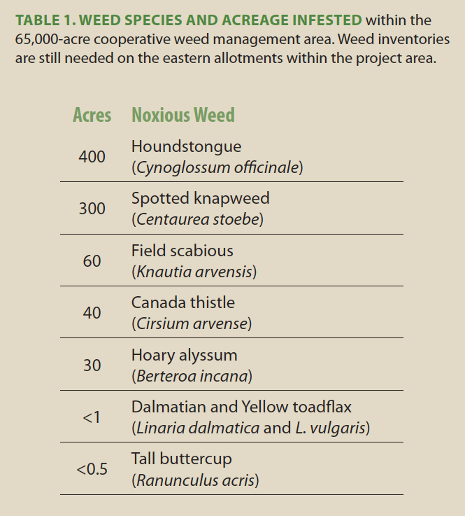 TABLE 1. Weed species and acreage infested  within the 65,000-acre cooperative weed management area. Weed inventories are still needed on the eastern allotments within the project area.