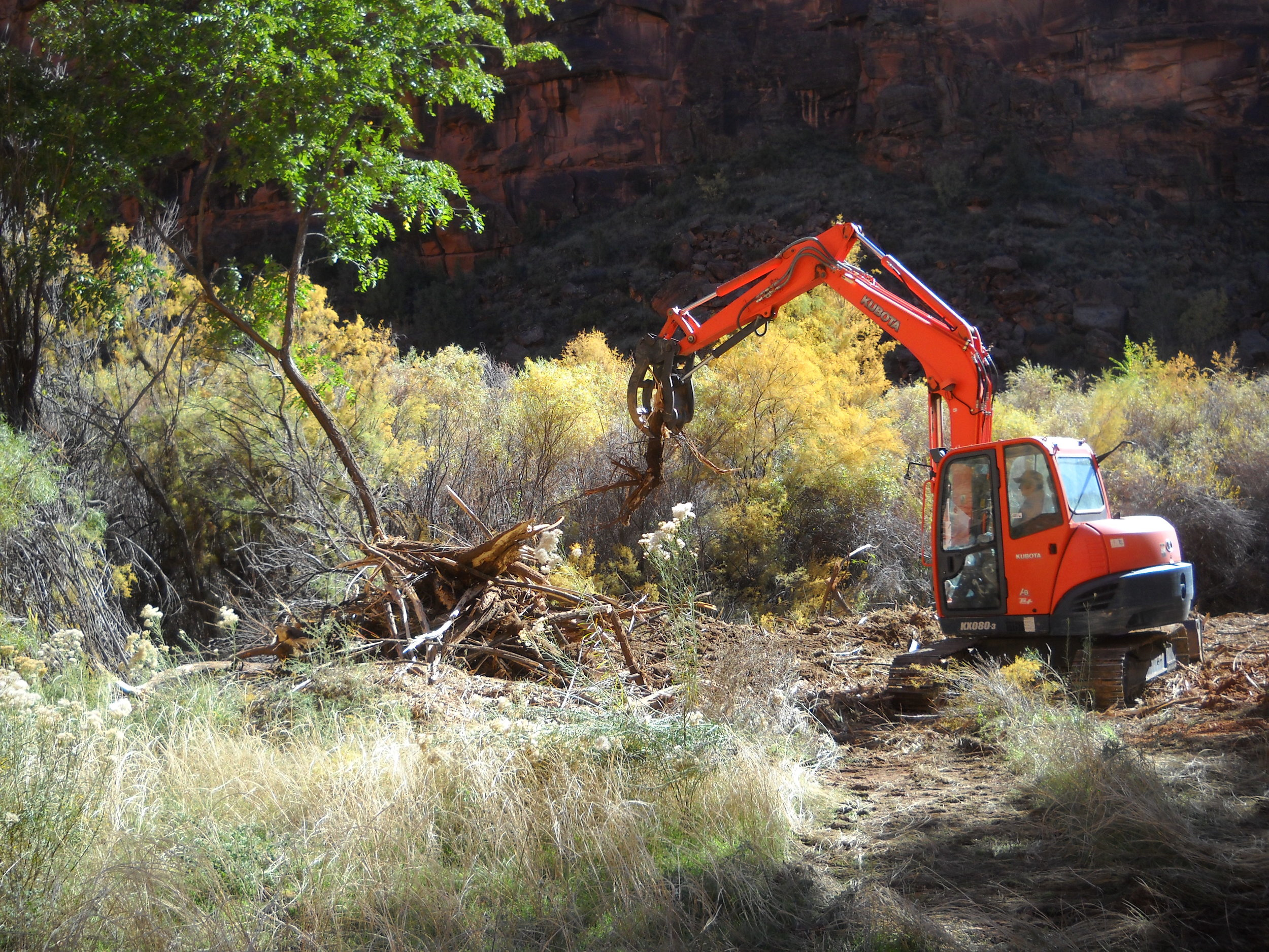 Figure 3. Excavators with a grapple are used to remove tamarisk and other woody invasive plants, and pile debris for burning.