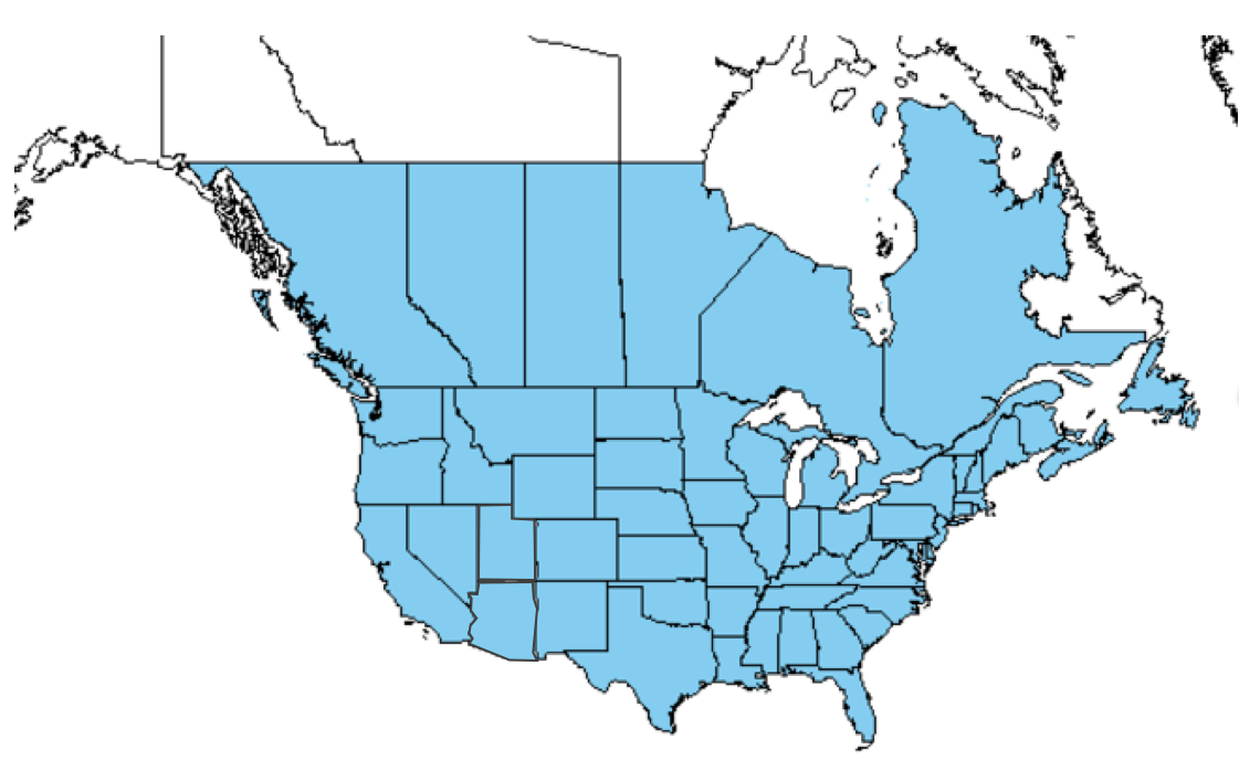 Figure 1. Sulfur cinquefoil distribution in the United States and Canada. (USDA Plants Database and EDDMapS)