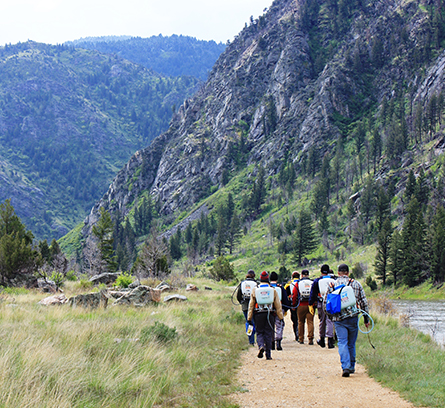 Figure 4 . Volunteers and weed crew members hike into Bear Trap Wilderness during the annual spray day.