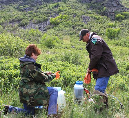 Figure 5.  Erik Broeder and Karen Ward, BLM, mix herbicide onsite for weed treatments.