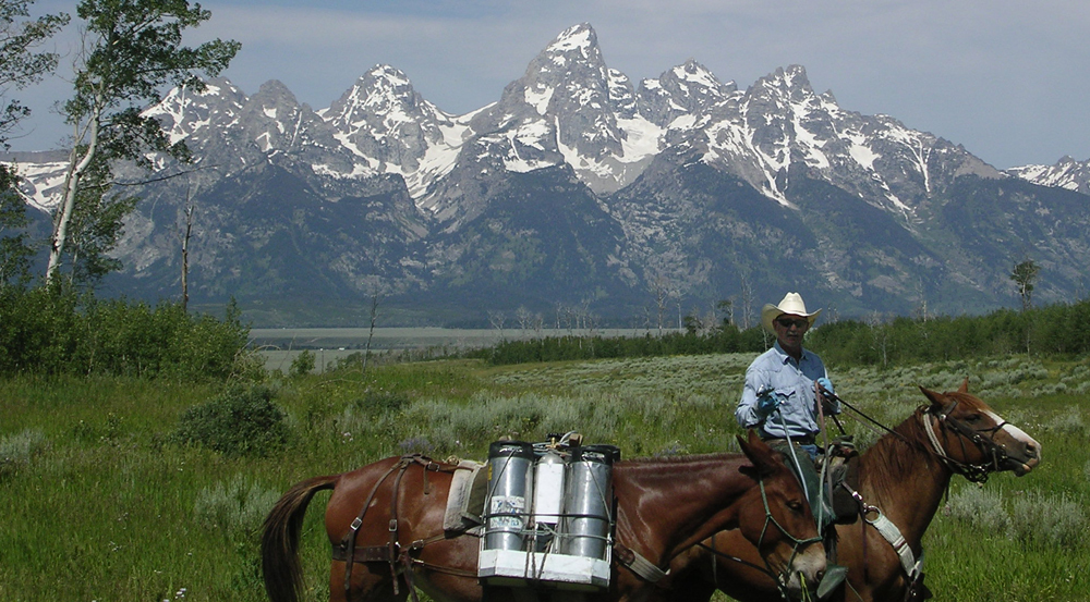 Dave Hanna managing invasive plants in Jackson Hole, WY.