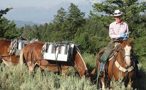 Figure 2 : Karin Hanna and pack mules managing invasive plants along trails in Grand Teton National Park.