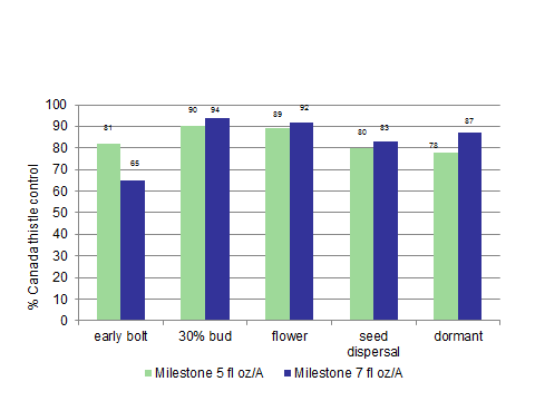 Figure 2: Canada thistle control at four application timings evaluated one year after application (2 locations SD/MN). Early bolt stage SD data only.