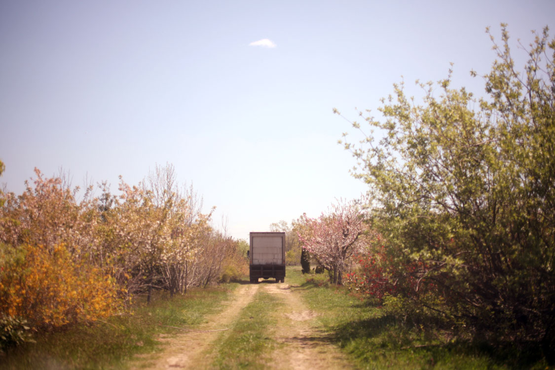 bens_truck.jpg