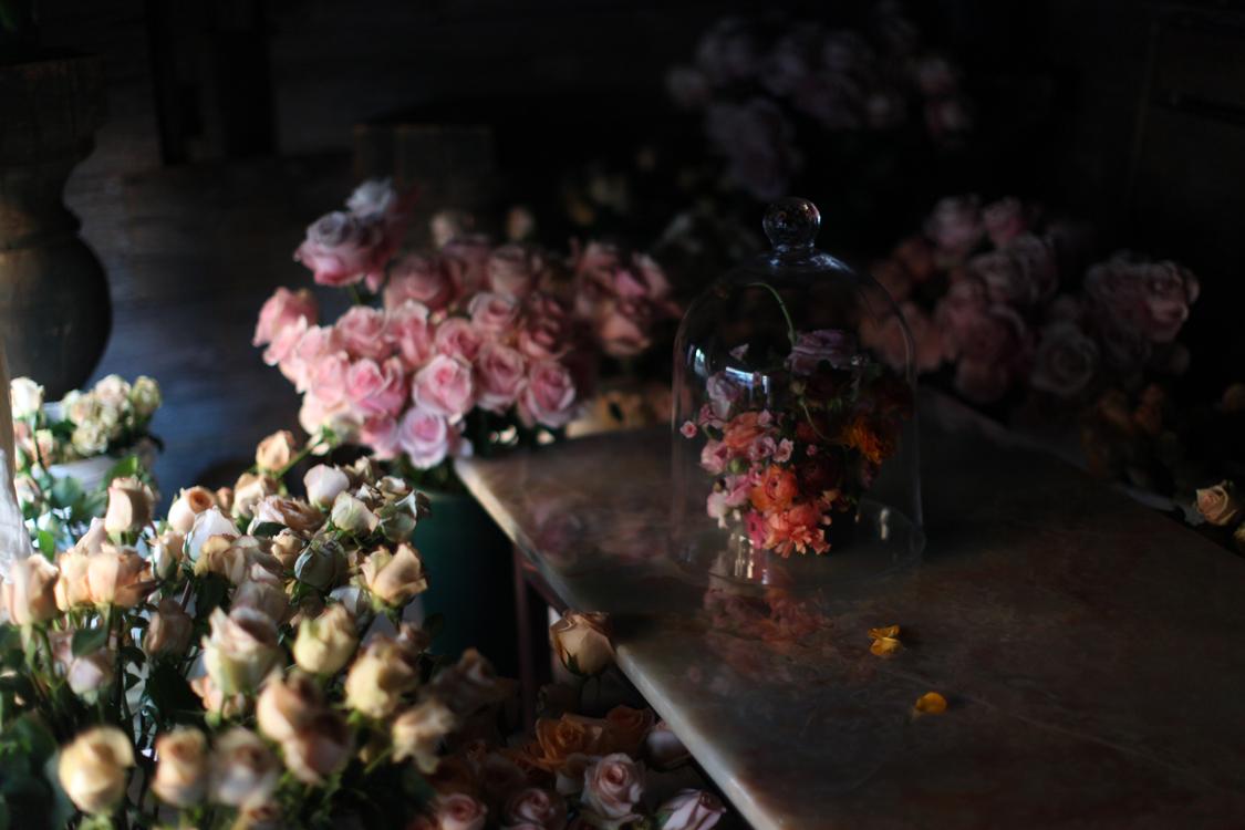 roses for weddings?.jpg