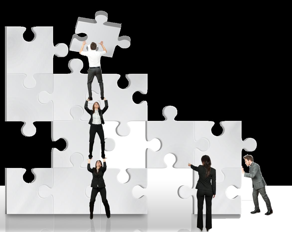 Partnership puzzle.png